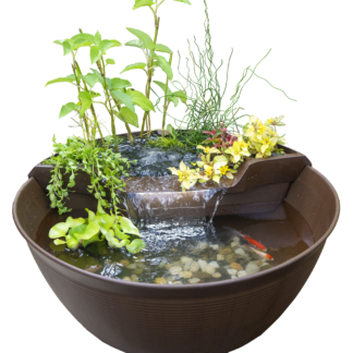 Container Water Gardens & Patio Ponds